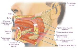 Поражения подъязычно-челюстного нерва
